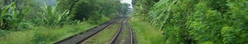 train.jpg Sri Lanka travel and tours